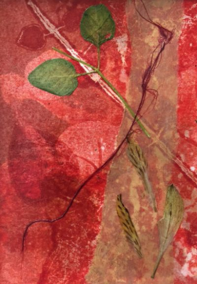 nature abstracted, monotype, Michelle Lindblom, visual artist, collage, mixed media, printmaking, contemporary, nature