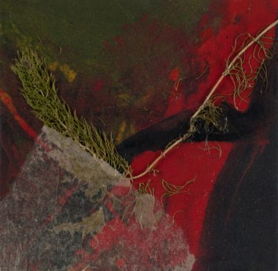 reverence nature, monotype, Michelle Lindblom, visual artist, collage, mixed media, printmaking, contemporary, nature