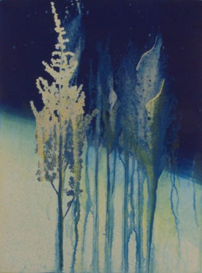 printmaker, monotype, abstract, collage, mixed media, nature, michelle lindblom, contemporary