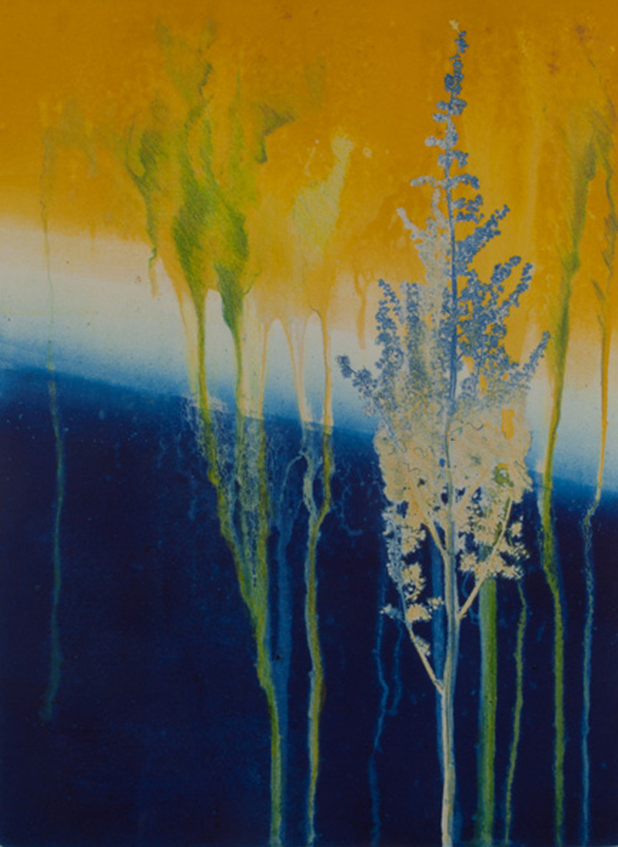 mixed media nuances, abstract nature, collage, mixed media, Michelle Lindblom, contemporary, nature