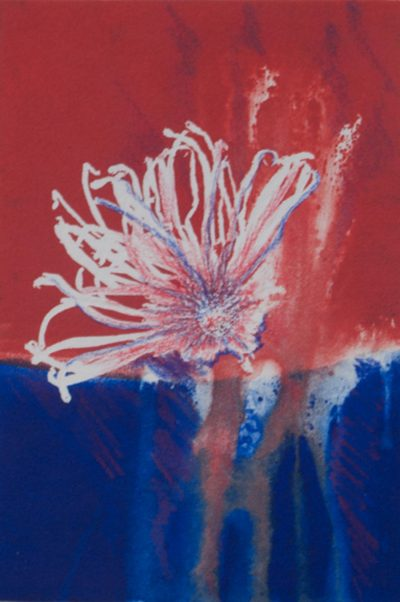rise, reds, plants, blues, monotype, contemporary, mixed media, abstract nature, mixed media, Michelle Lindblom, nature