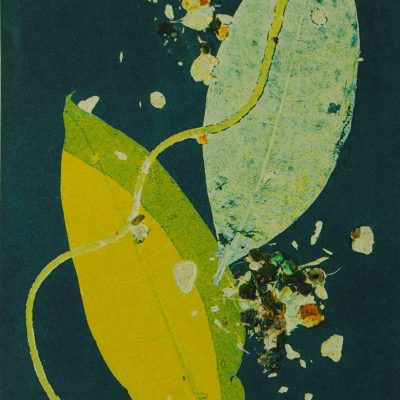 diffusion, monotype, printmaking, original, nature, michelle lindblom, bend oregon, spiritual