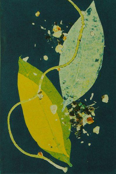 diffusion, monotype, printmaking, original, nature, michelle lindblom, bend oregon, spiritual