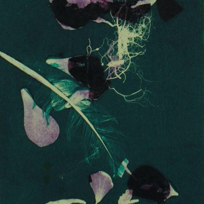 natures sojourn, monotype, printmaking, original, nature, michelle lindblom, bend oregon, nature art, plants, phthalo blue-green, flowers