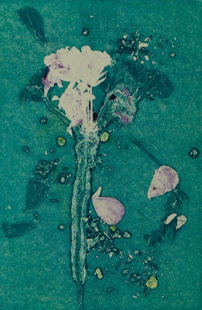 nuanced expansion, monotype, printmaking, original, nature, michelle lindblom, bend oregon, spiritual