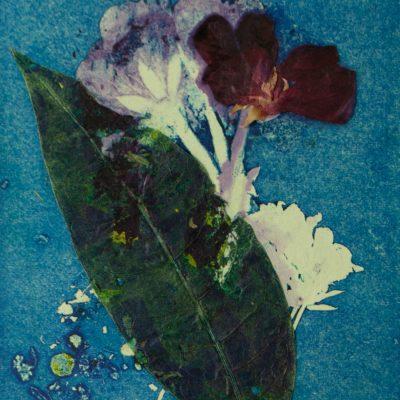 odyssey in nature, monotype, printmaking, original, nature, michelle lindblom, bend oregon, spiritual