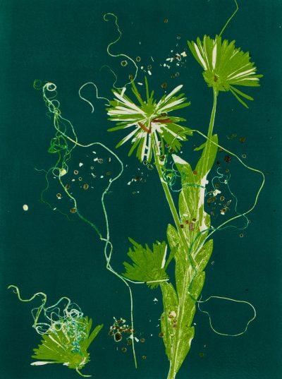 currents, monotype, printmaking, original, nature, michelle lindblom, bend oregon, nature art, plants, phthalo blue-green, flowers